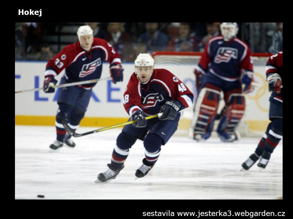 Hokej sestavila www.jesterka3.webgarden.cz