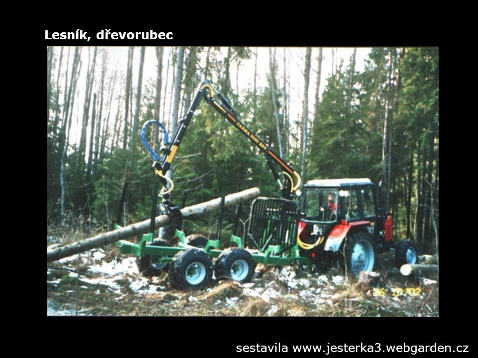 Lesník, dřevorubec sestavila www.jesterka3.webgarden.cz