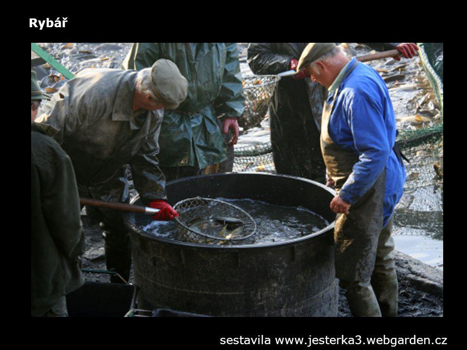 Rybář sestavila www.jesterka3.webgarden.cz