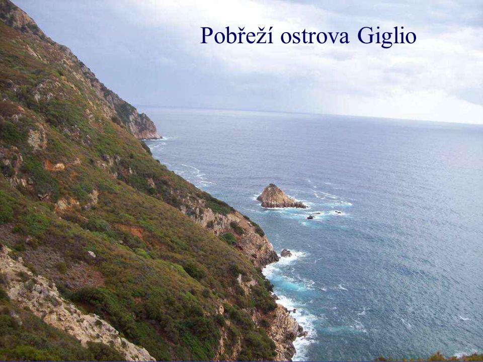 Pobřeží ostrova Giglio