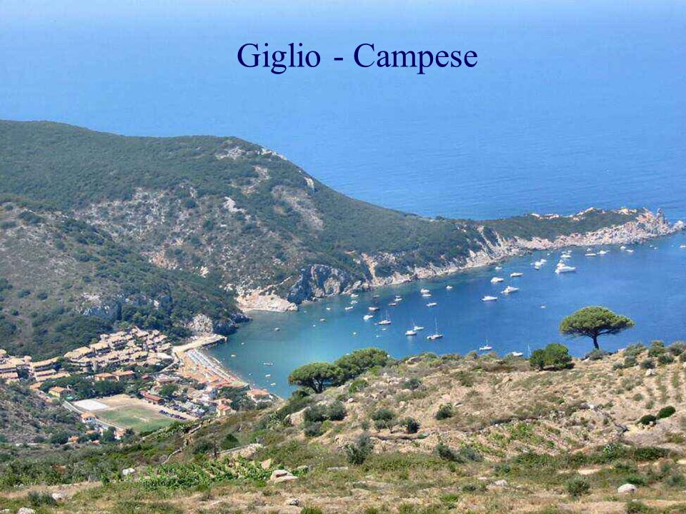 Giglio - Campese
