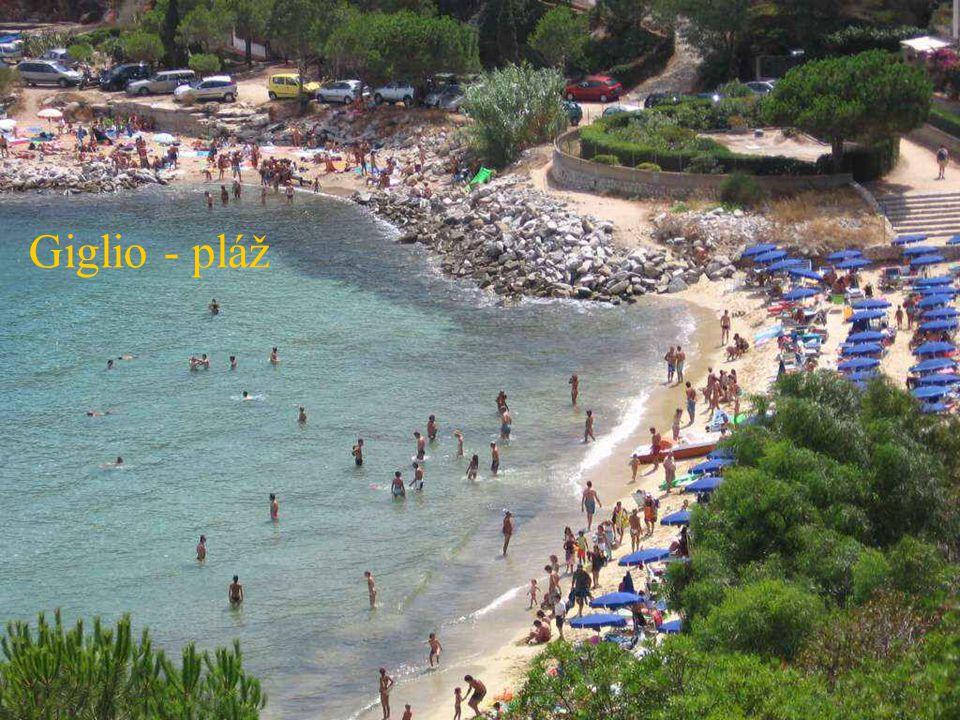 Giglio - pláž