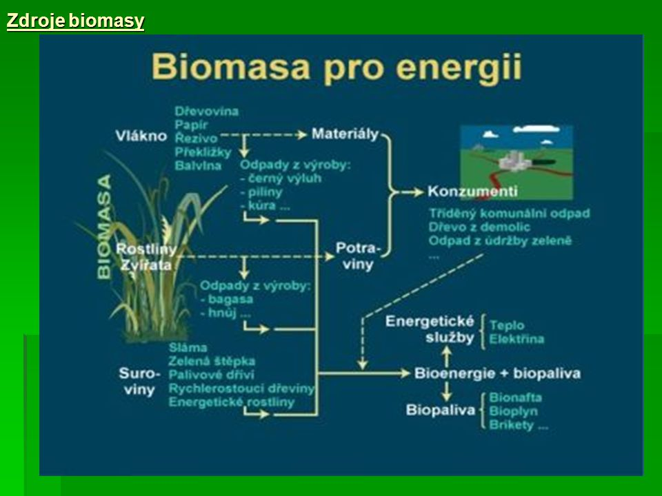 Zdroje biomasy