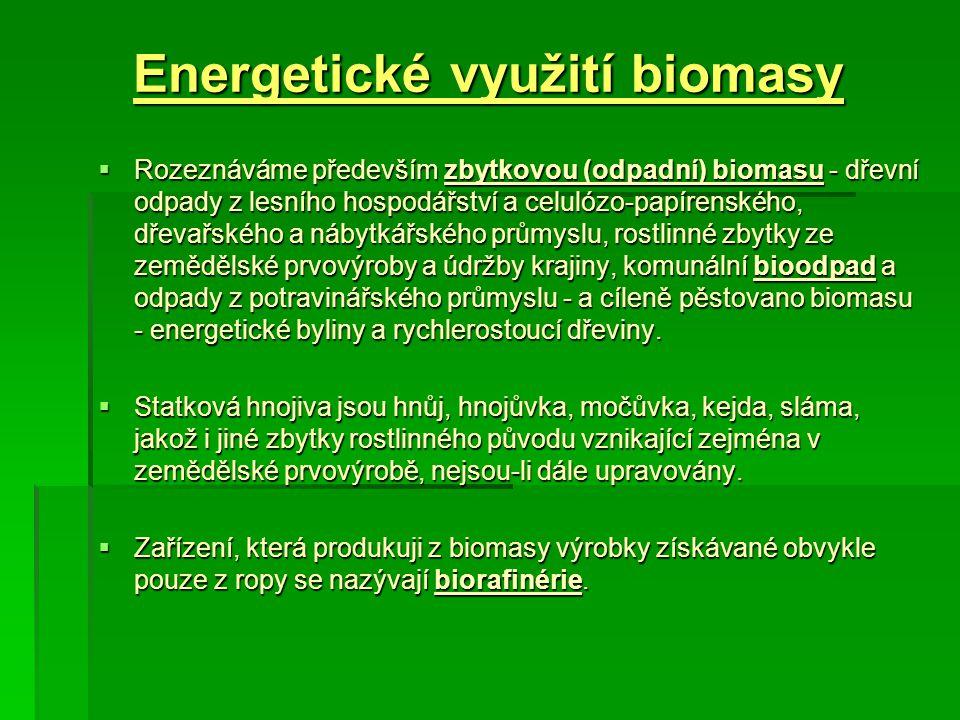 Energetické využití biomasy