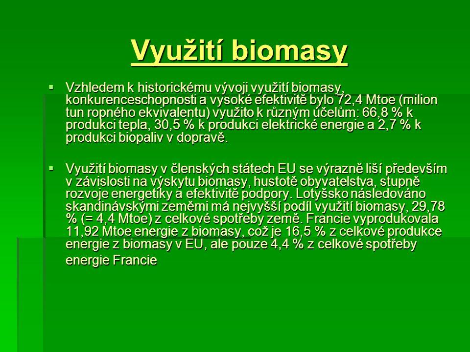 Využití biomasy