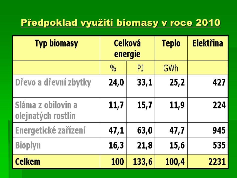 Předpoklad využití biomasy v roce 2010