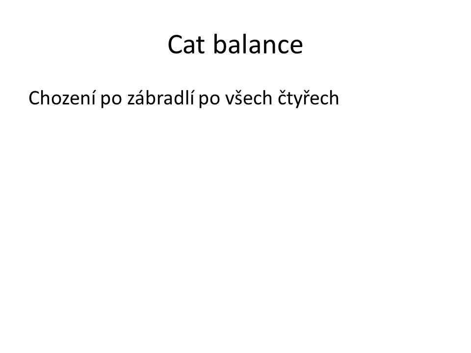 Cat balance Chození po zábradlí po všech čtyřech