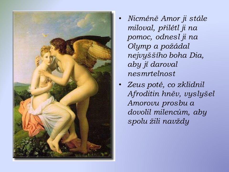 Nicméně Amor ji stále miloval, přilétl ji na pomoc, odnesl ji na Olymp a požádal nejvyššího boha Dia, aby jí daroval nesmrtelnost