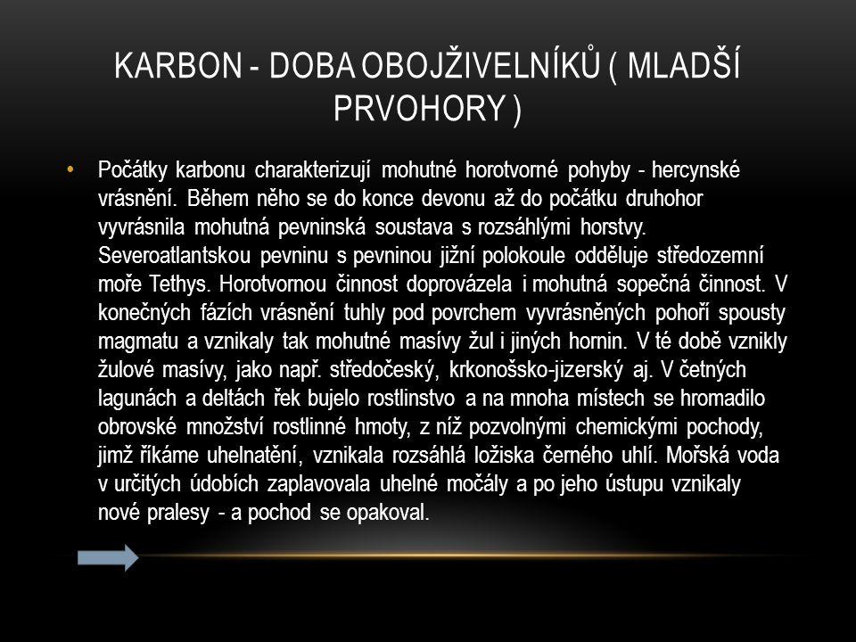 KARBON - doba obojživelníků ( mladší prvohory )