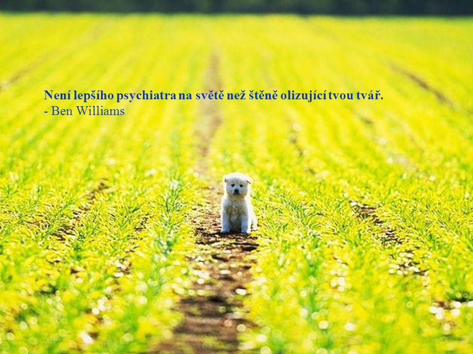 Není lepšího psychiatra na světě než štěně olizující tvou tvář.