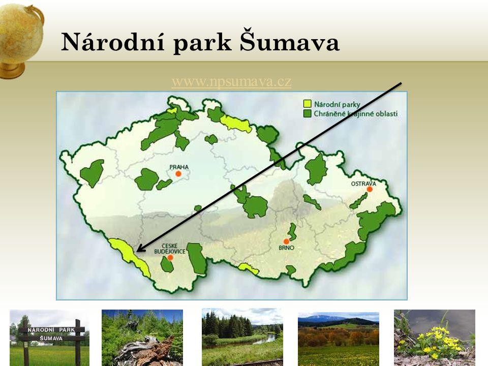 Národní park Šumava www.npsumava.cz