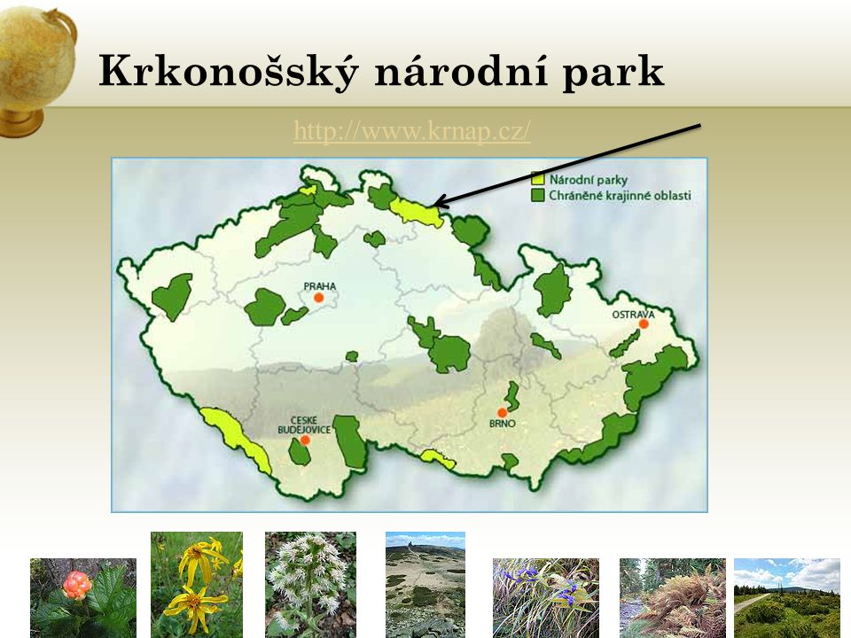 Krkonošský národní park