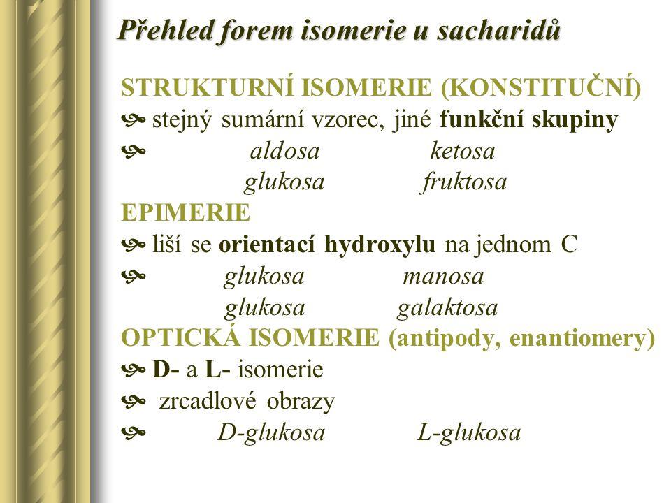 Přehled forem isomerie u sacharidů