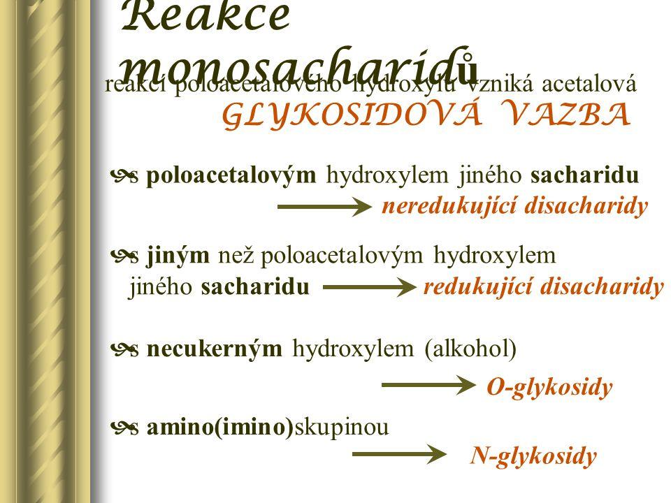 Reakce monosacharidů GLYKOSIDOVÁ VAZBA