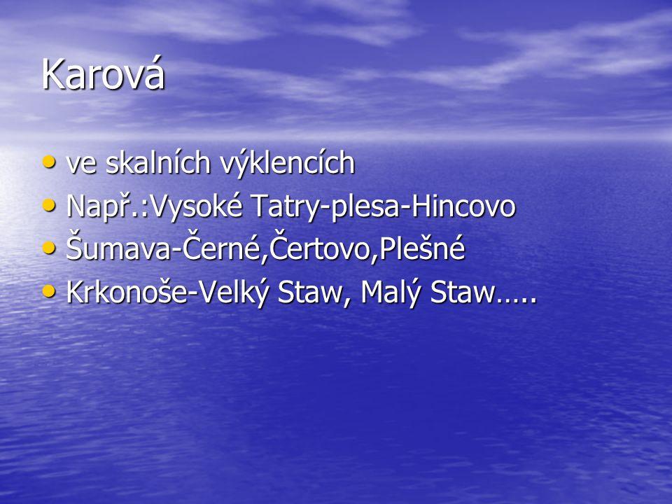 Karová ve skalních výklencích Např.:Vysoké Tatry-plesa-Hincovo