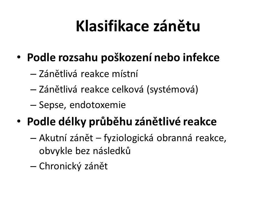 Klasifikace zánětu Podle rozsahu poškození nebo infekce