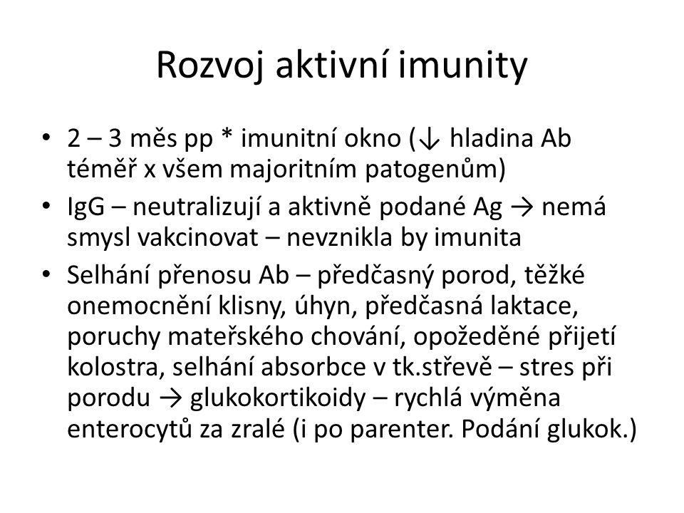 Rozvoj aktivní imunity
