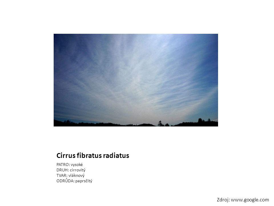 Cirrus fibratus radiatus
