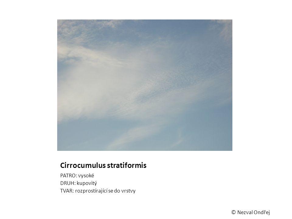 Cirrocumulus stratiformis