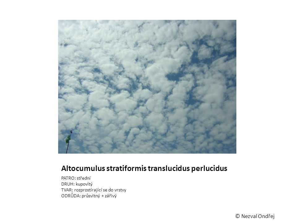 Altocumulus stratiformis translucidus perlucidus