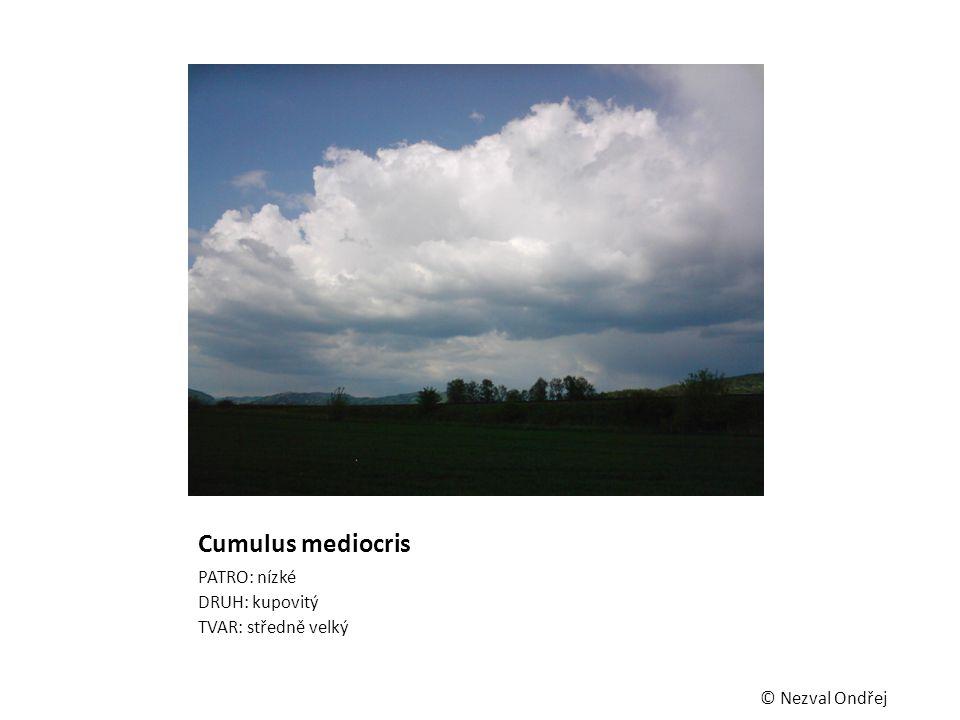Cumulus mediocris PATRO: nízké DRUH: kupovitý TVAR: středně velký