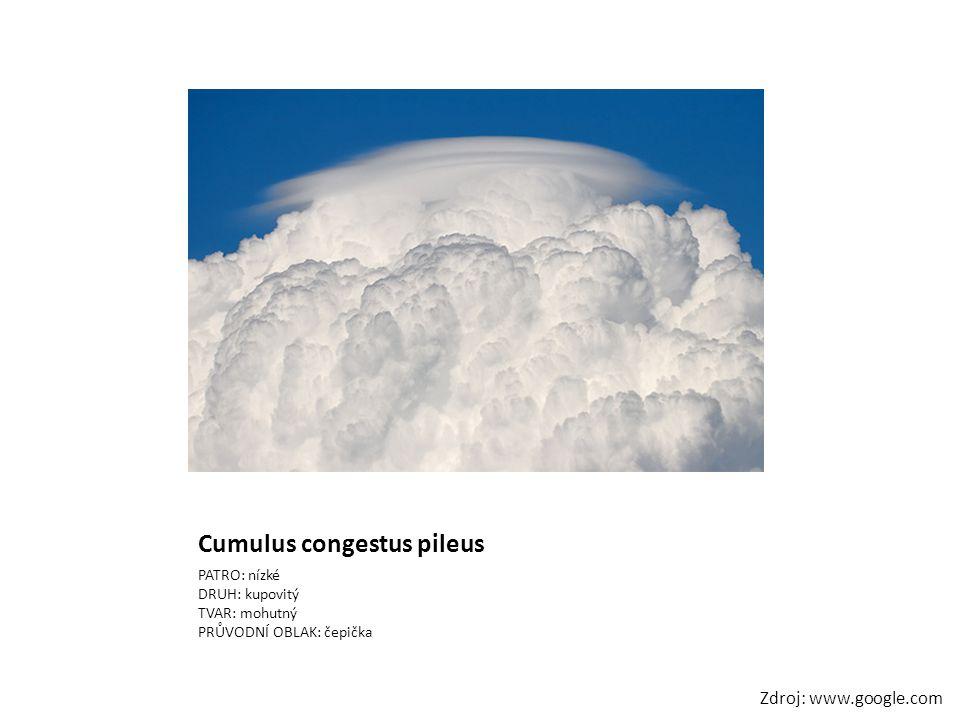 Cumulus congestus pileus