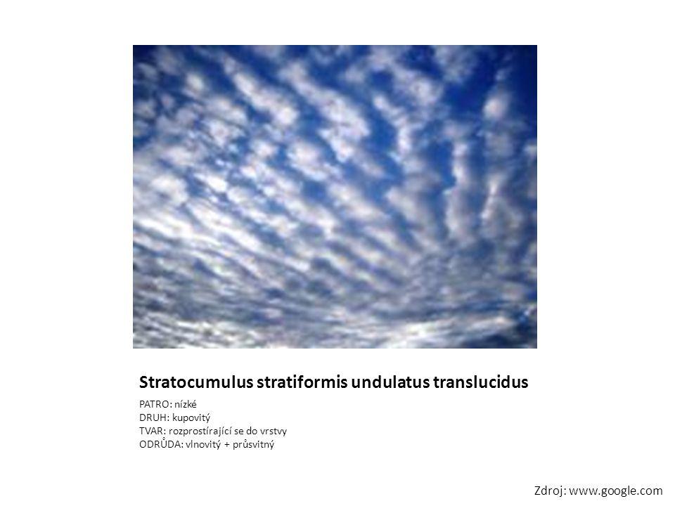 Stratocumulus stratiformis undulatus translucidus