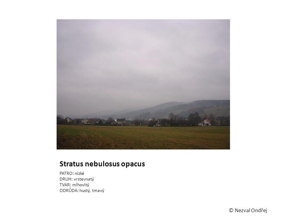Stratus nebulosus opacus