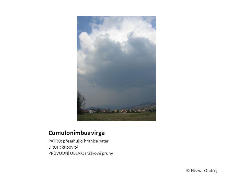Cumulonimbus virga PATRO: přesahující hranice pater DRUH: kupovitý