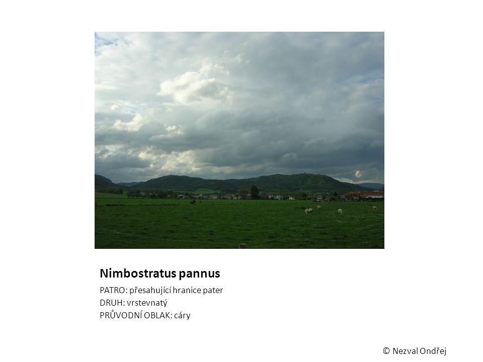 Nimbostratus pannus PATRO: přesahující hranice pater DRUH: vrstevnatý
