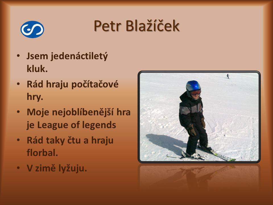 Petr Blažíček Jsem jedenáctiletý kluk. Rád hraju počítačové hry.