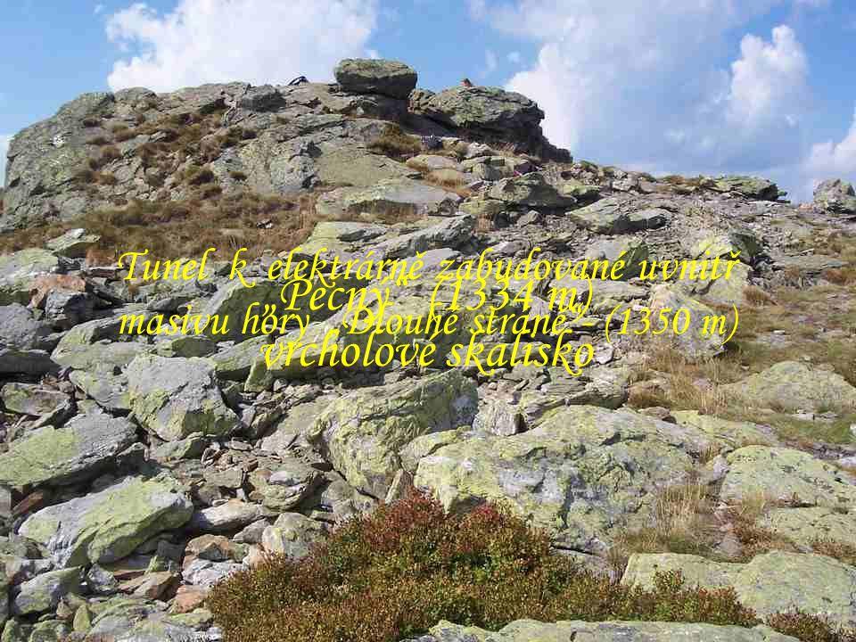 """Pecný (1334 m) vrcholové skalisko"