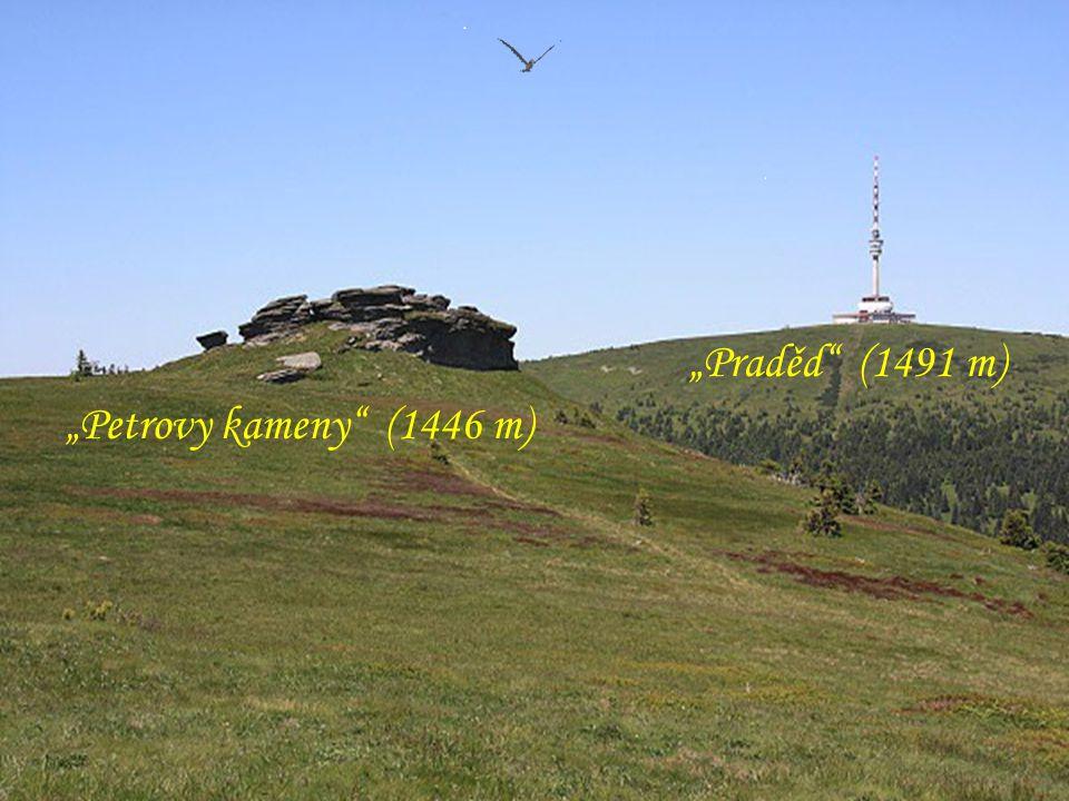 """""""Vysoká hole (1464 m) - v zajetí mraku"""