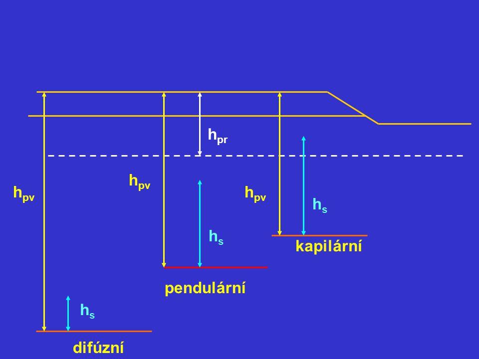 hpr hpv hpv hpv hs hs kapilární pendulární hs difúzní