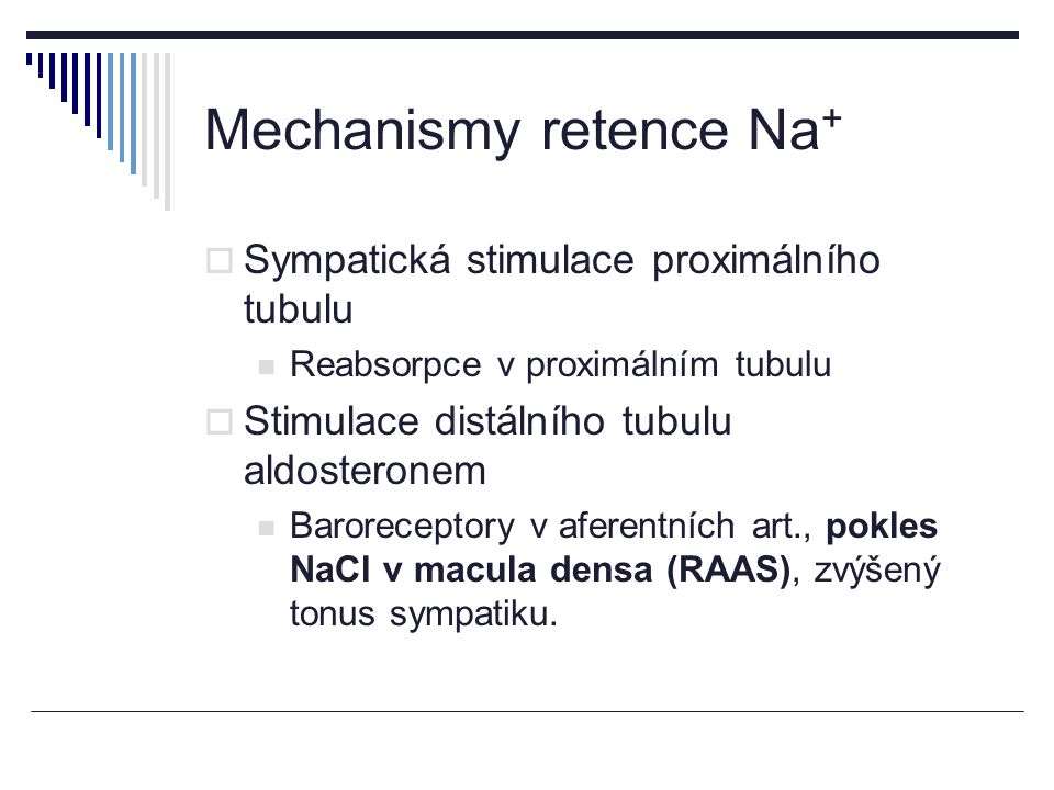 Mechanismy retence Na+