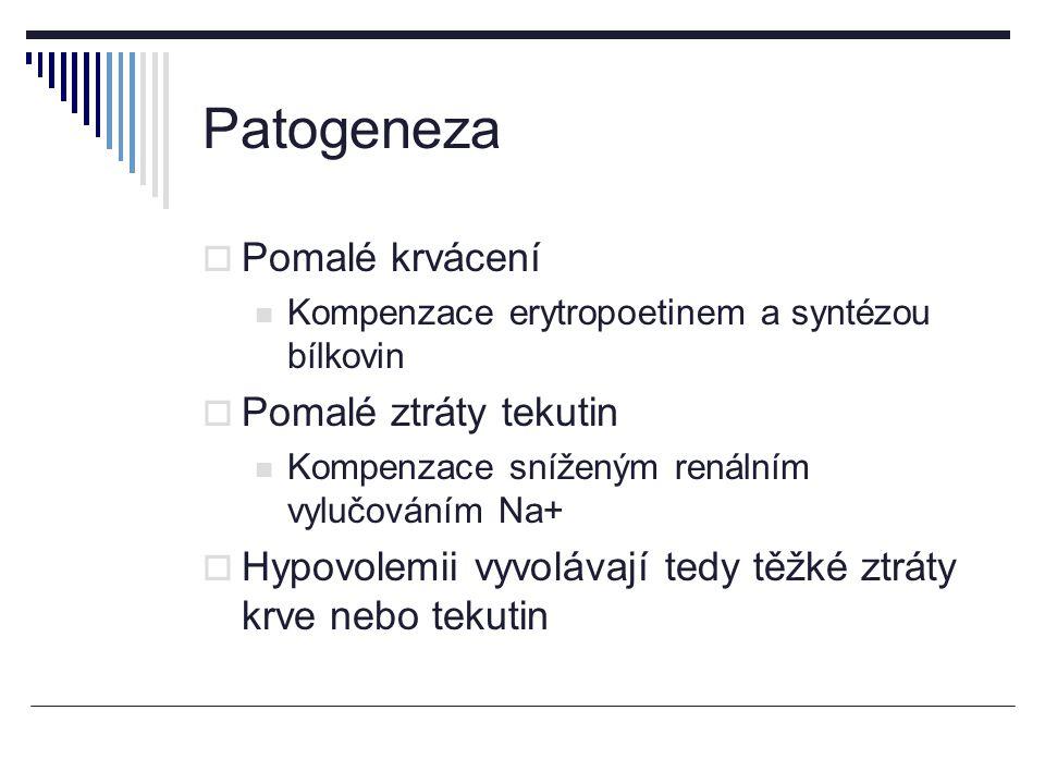 Patogeneza Pomalé krvácení Pomalé ztráty tekutin