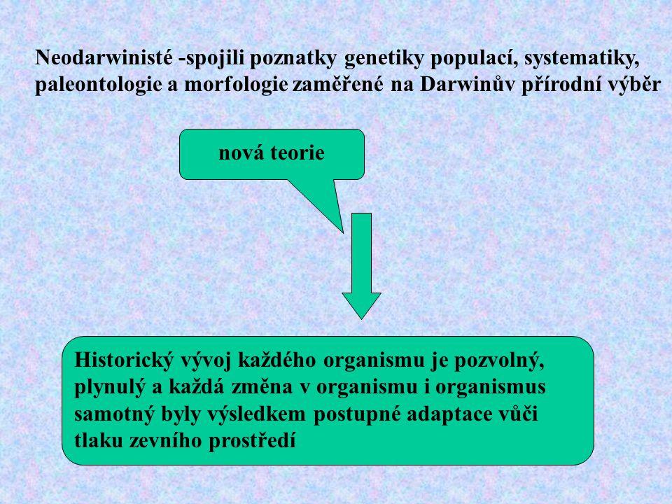 Neodarwinisté -spojili poznatky genetiky populací, systematiky, paleontologie a morfologie zaměřené na Darwinův přírodní výběr