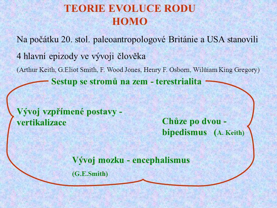 TEORIE EVOLUCE RODU HOMO