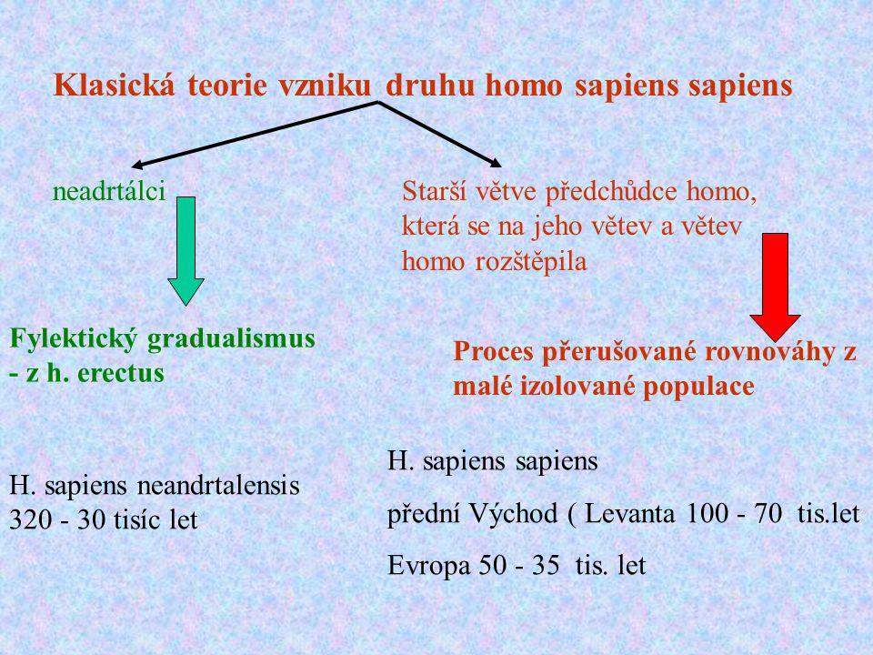 Klasická teorie vzniku druhu homo sapiens sapiens