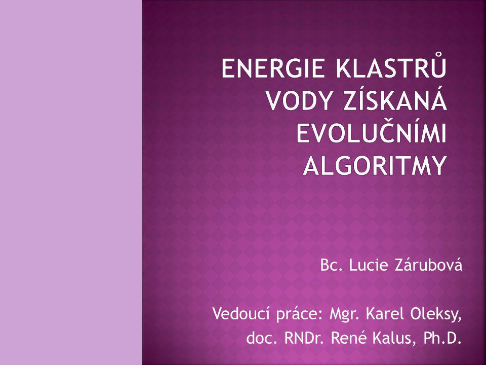 ENERGIE KLASTRŮ VODY ZÍSKANÁ EVOLUČNÍMI ALGORITMY