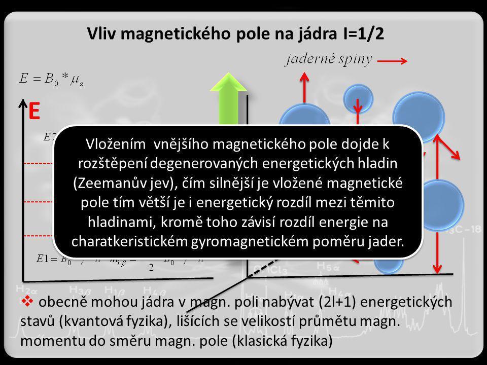 Vliv magnetického pole na jádra I=1/2