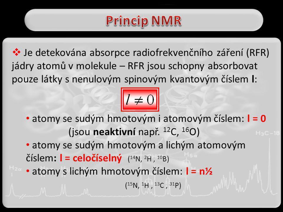 Princip NMR