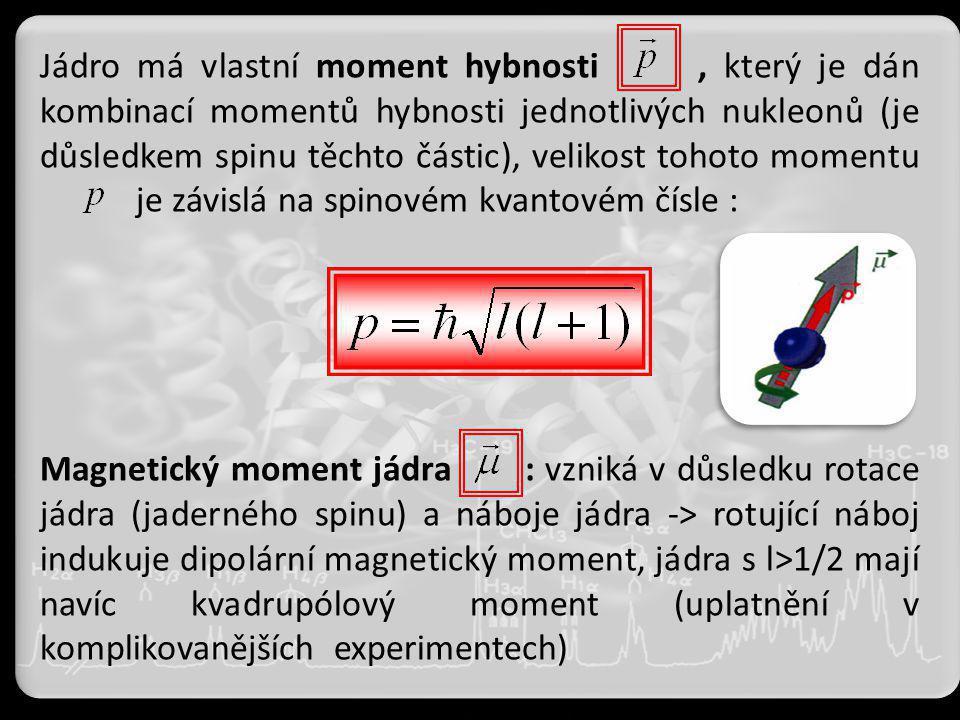 Jádro má vlastní moment hybnosti , který je dán kombinací momentů hybnosti jednotlivých nukleonů (je důsledkem spinu těchto částic), velikost tohoto momentu je závislá na spinovém kvantovém čísle :