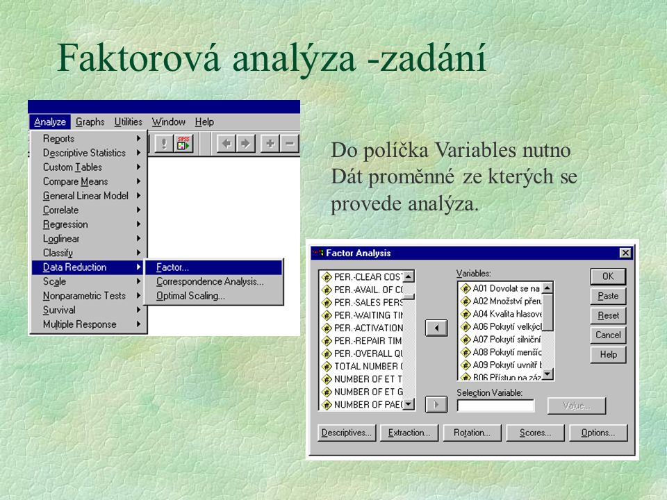 Faktorová analýza -zadání