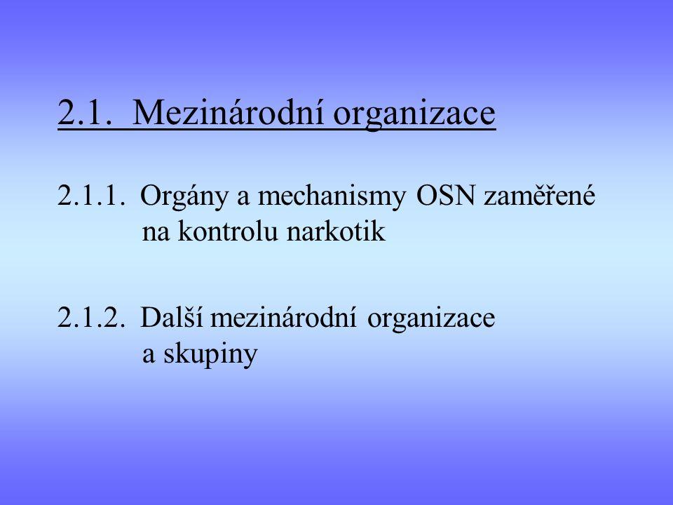 2.1. Mezinárodní organizace