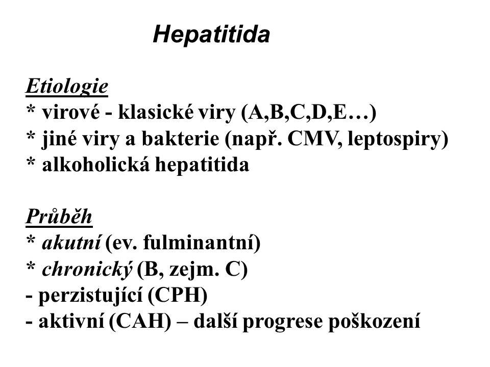 Hepatitida Etiologie * virové - klasické viry (A,B,C,D,E…)