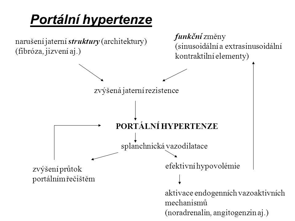 Portální hypertenze funkční změny (sinusoidální a extrasinusoidální kontraktilní elementy) narušení jaterní struktury (architektury)