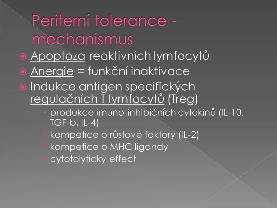 Periferní tolerance - mechanismus