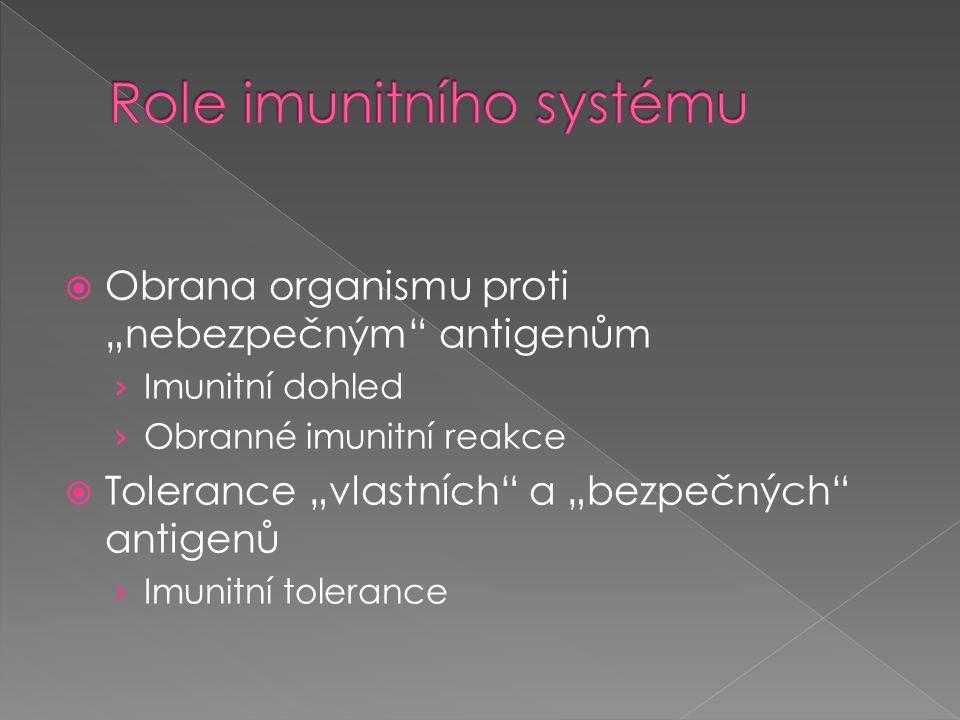 Role imunitního systému