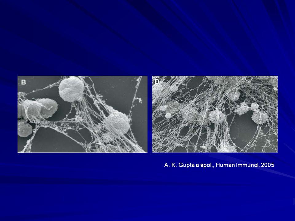 A. K. Gupta a spol., Human Immunol. 2005
